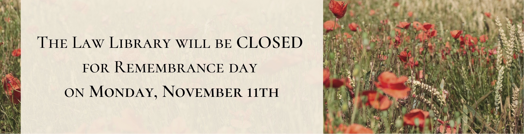 Closed Remembrance Day